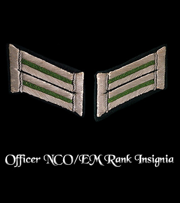 Enter Officer NCO/EM Rank Insignia
